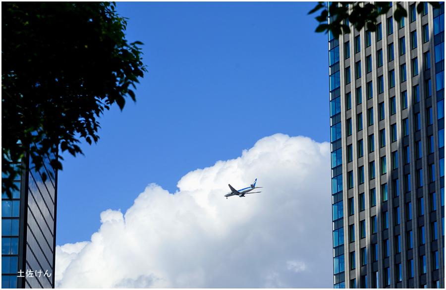 大阪城公園・飛行機2