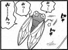 momo201708_022_01.jpg