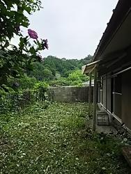 170803_茨城草刈02