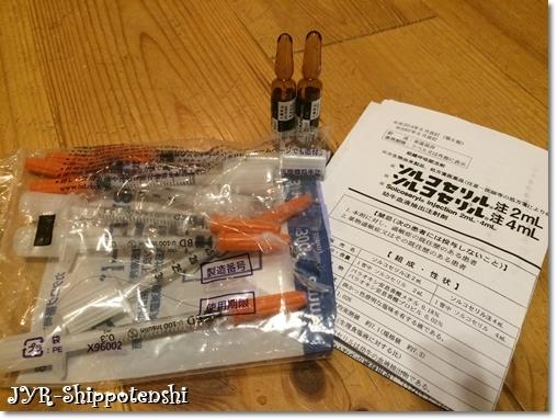 ryo_chusya170905.JPG