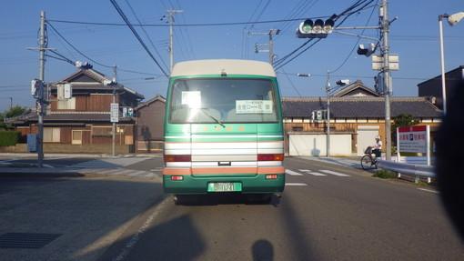 IMGP8811.jpg