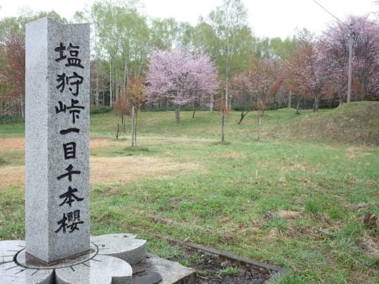千本桜03