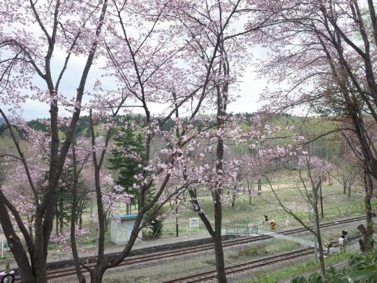 千本桜18