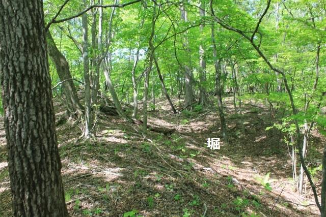 碓井新城IMG_5078