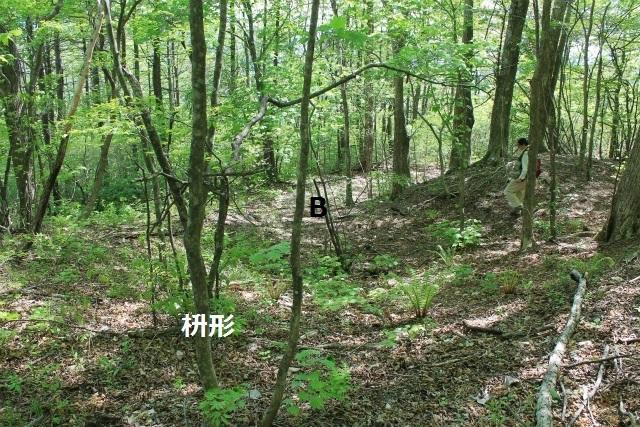 碓井新城IMG_5080