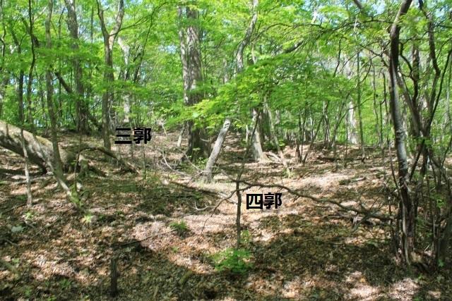 碓井新城IMG_5076