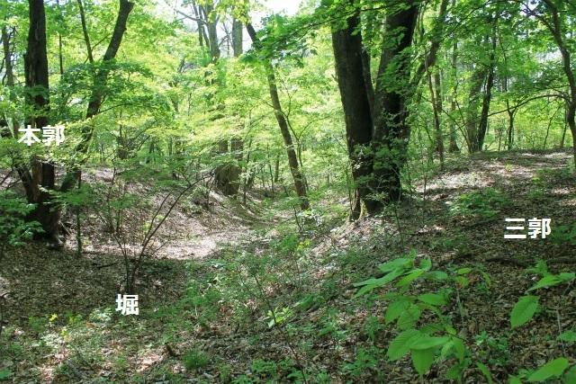 碓井新城IMG_5086