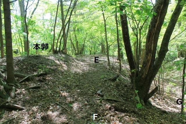 碓井新城IMG_5084
