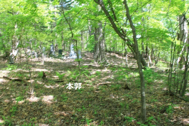 碓井新城IMG_5071