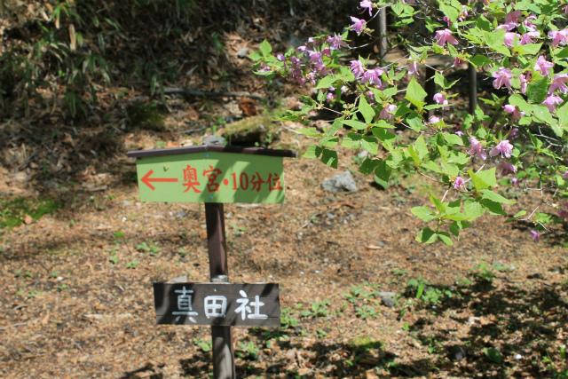 真田社IMG_5109