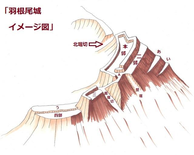 s羽根尾図