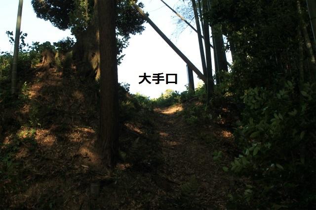 sIMG_5422.jpg