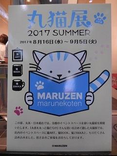 maruneko1.jpg