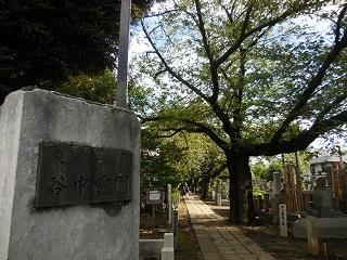 yanaka_28.jpg
