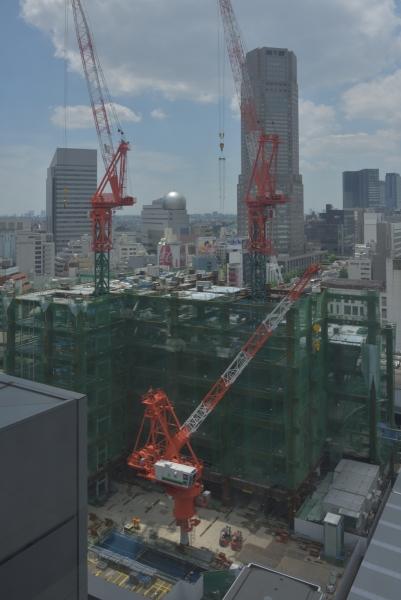shibuya17050454.jpg