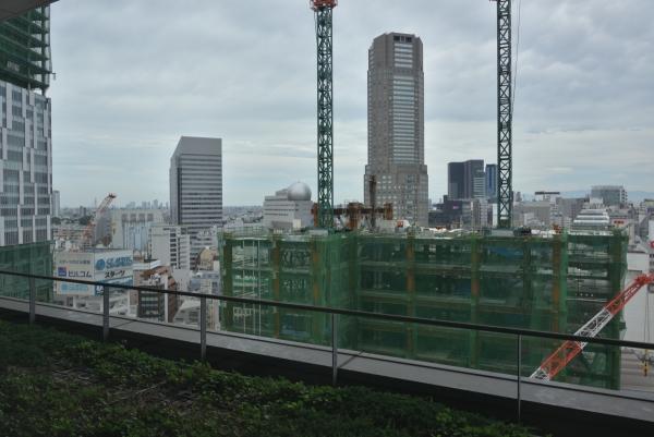 shibuya17070244.jpg