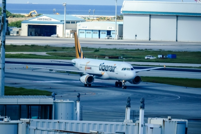Tiger Air 737