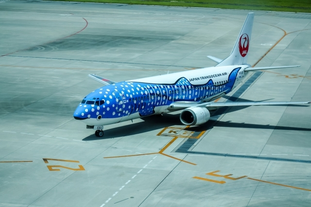 JAL 737 Whale shark paint