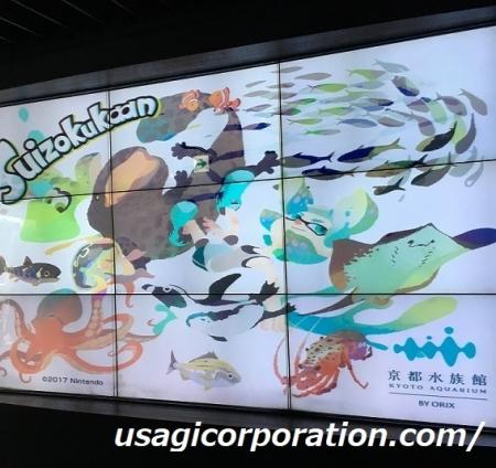 2017 0803 水族館3