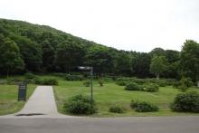 ハマナスの丘
