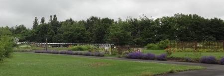 リリートレインと香りの庭