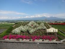 14:19 北海道の形の花壇