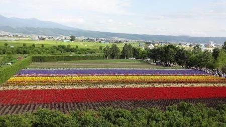 15:13 「香水の舎」2Fから見た 秋の彩りの畑