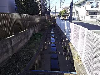 kyuumisawakara4.jpg