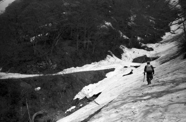 深山幽谷142g