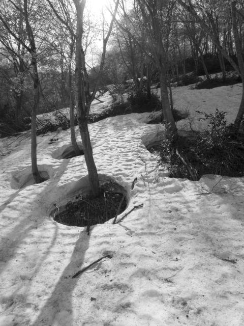深山幽谷143a