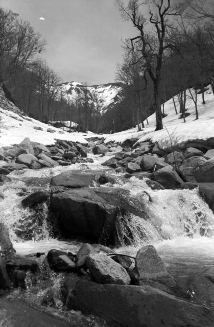 深山幽谷143f