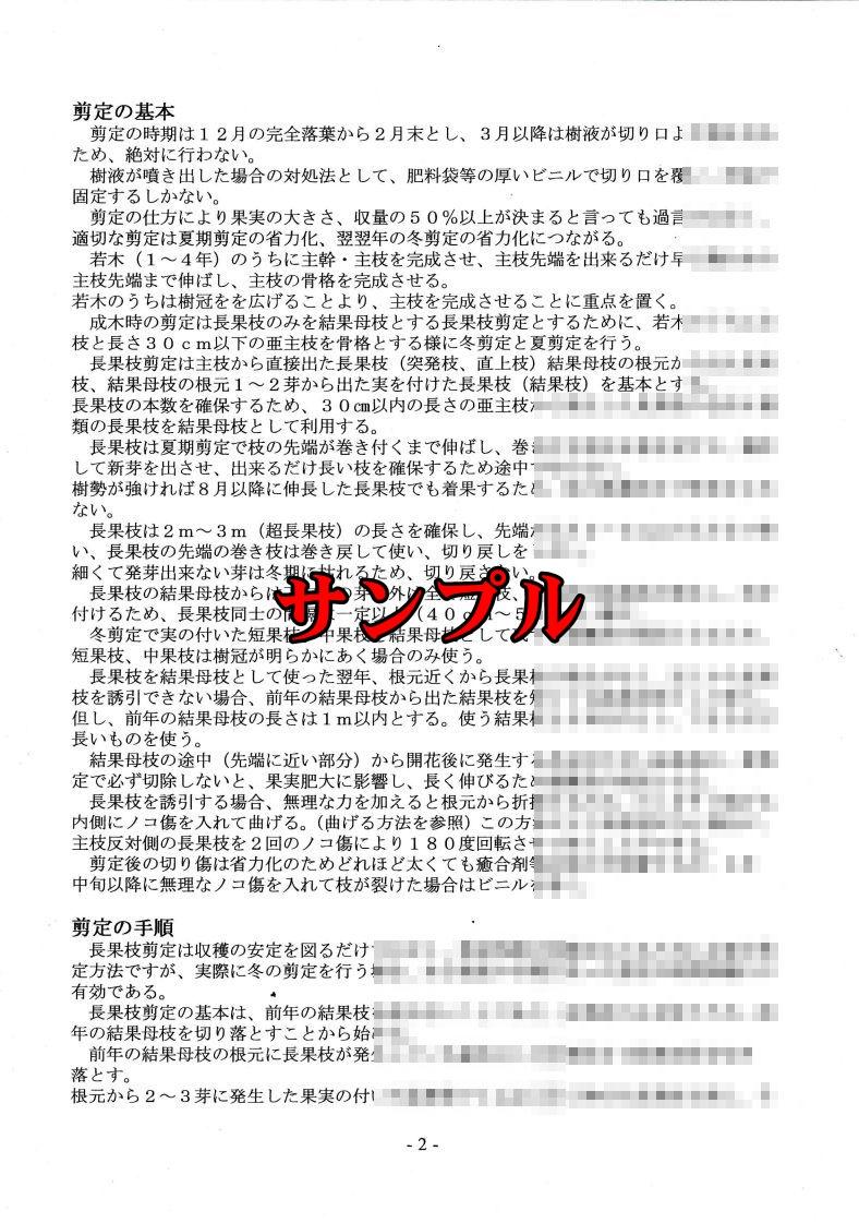 1RR_PDF2.jpg