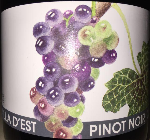 Pinot Noir Villa Dest 2014 part1