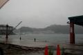 雨の那智勝浦港