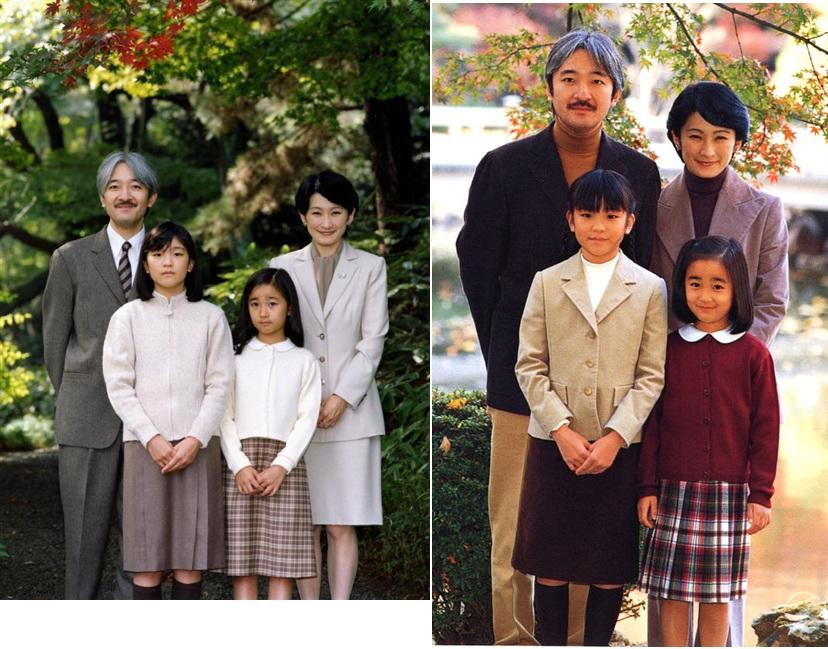 ●家族比較2004年頃