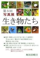 192-★はがき(blog)