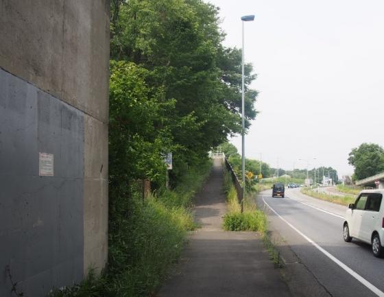 P5310019s.jpg