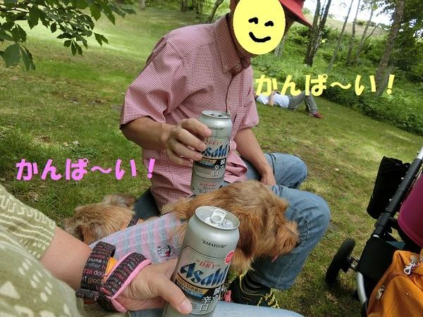 2017_0722_141615-CIMG4647a.jpg