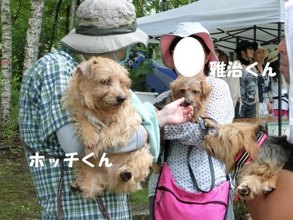 2017_0722_171625-CIMG4668a.jpg