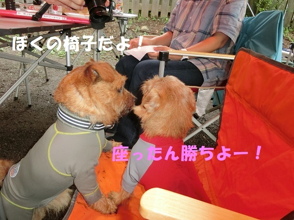 2017_0811_133830-CIMG4699a.jpg