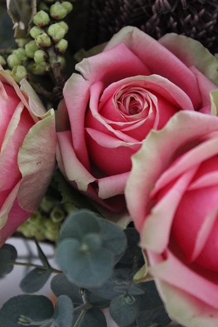 お誕生日のお花 (8)