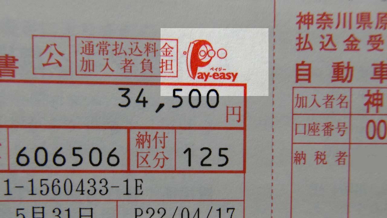 Payeasy02.jpg