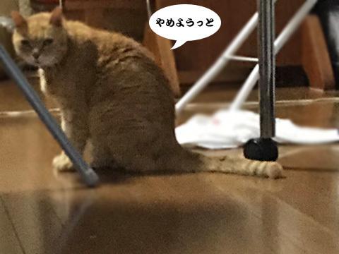 2017_09_12_4.jpg
