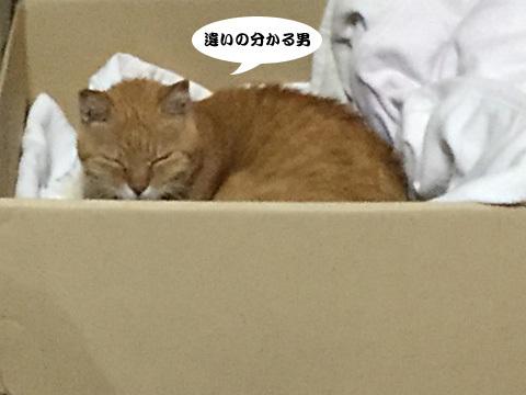 2017_09_20_4.jpg