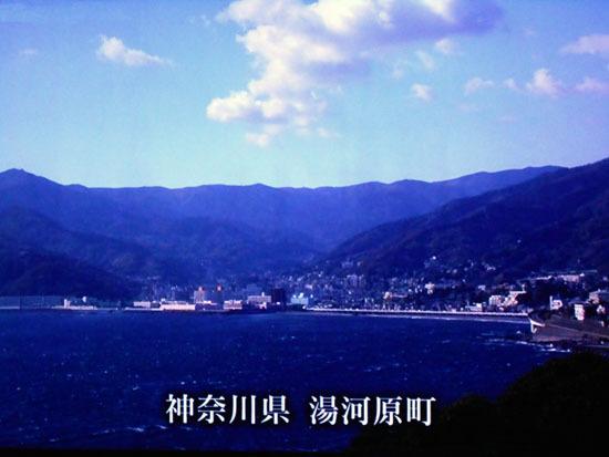 DSCN0130.jpg