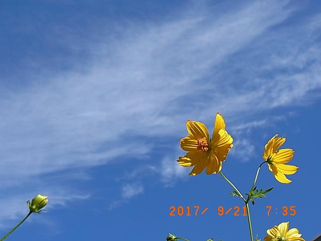2017_09210015.jpg