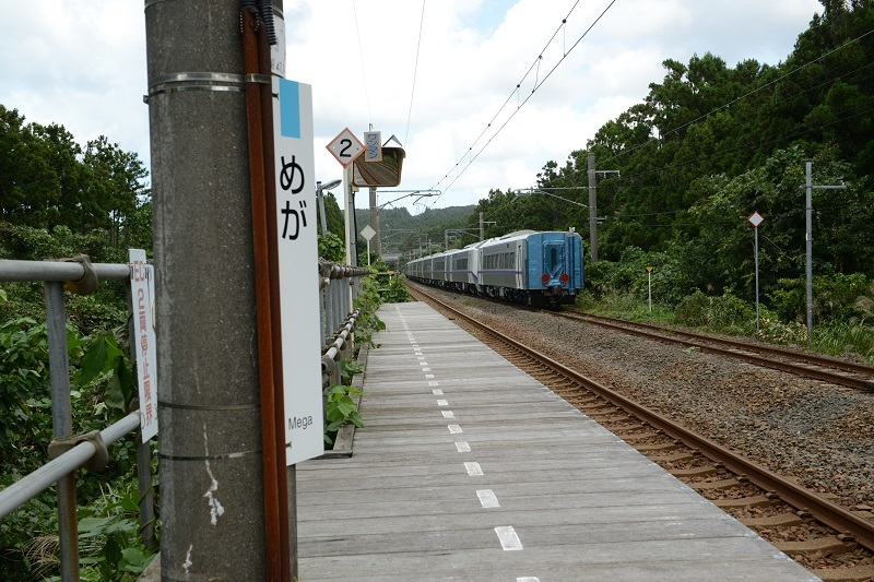 DSC_8677.jpg