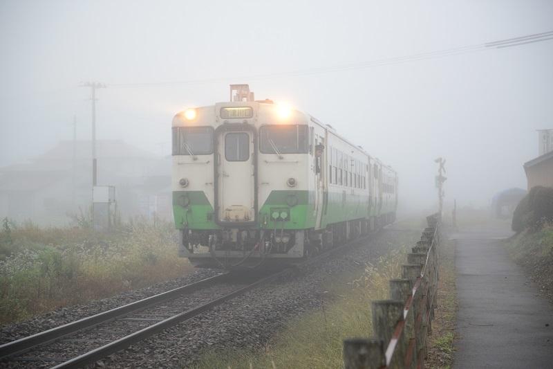 DSC_9193.jpg