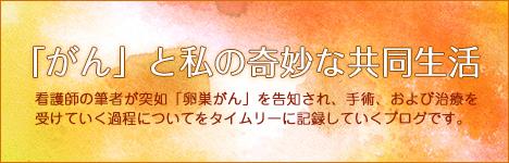 共同生活バナー(オレンジ)※文字のせ
