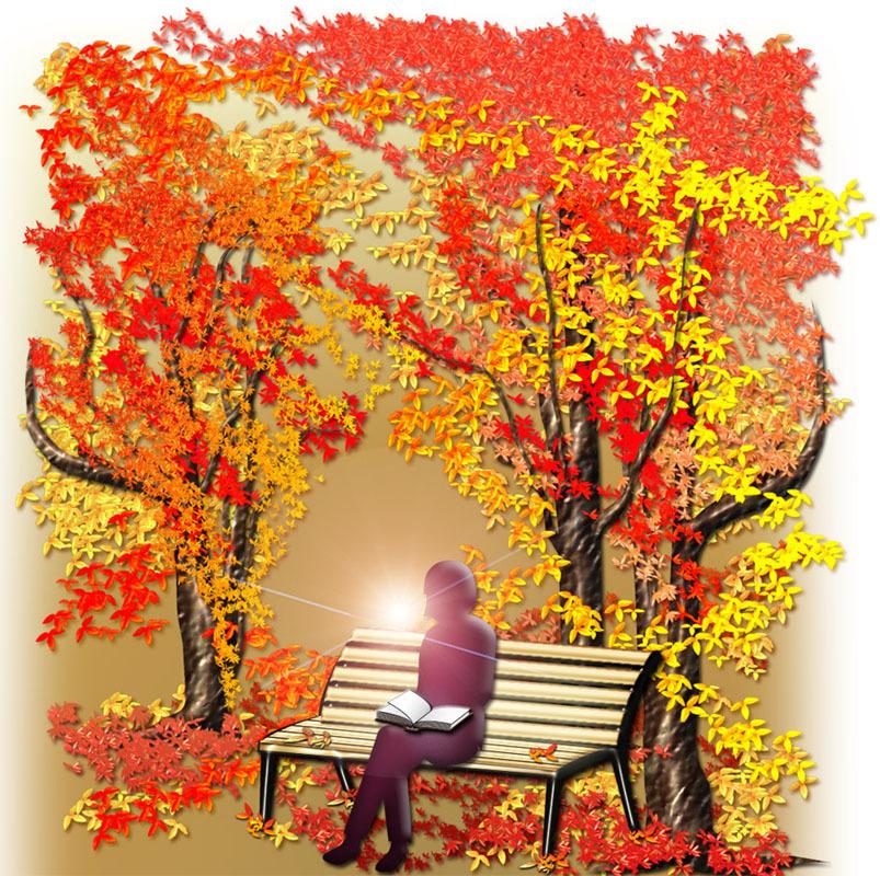 aki-silhouette-bench.jpg